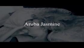 Aruba Boobs 1